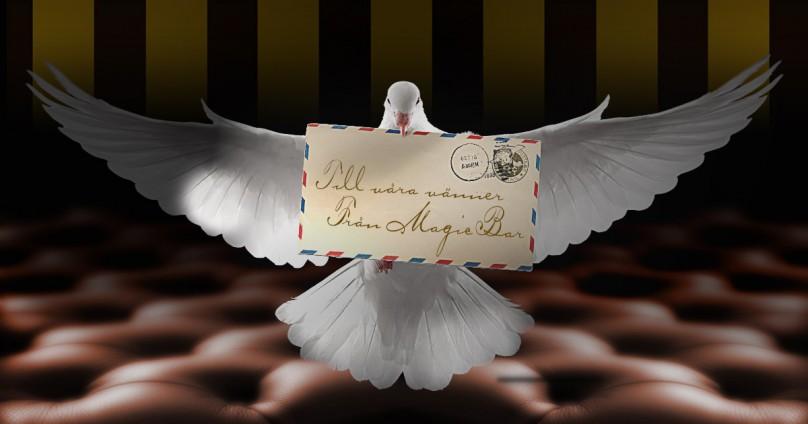 En duva kommer flygande med ett brev i sin näbb.